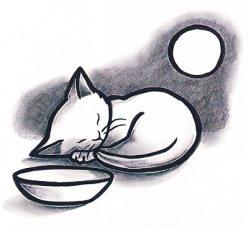 kittensfirstfullmoon2