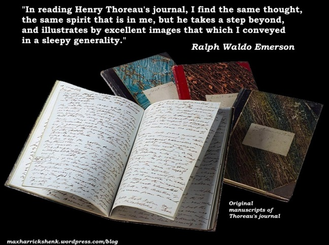 meme - Emerson on Thoreau's journals