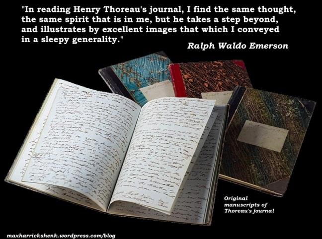 meme - Emerson on Thoreau's journals